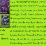 Rośliny znane i cenione w nowej odsłonie